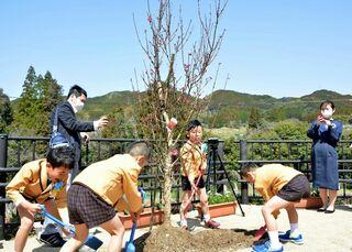 木の香に包まれて、新園舎で卒園式 記念植樹も、南部保育園