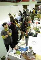 作品の生け込みを着々と進める各流派の展示者ら=佐賀市の市村記念体育館