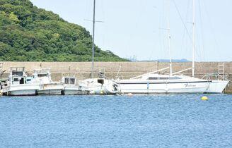 湊浜に多数の無許可係留船 プレジ…