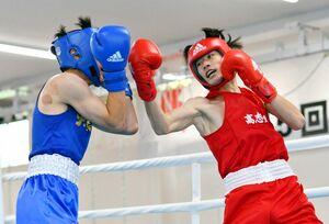ボクシング男子ライト級準決勝 第3ラウンド、強気に攻め立てる高志館の古賀逸希(右)=SAGAサンライズパーク総合体育館ボクシング場
