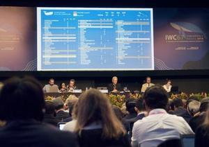 最終日を迎えたIWC総会。モニターに日本案の採決結果が映し出された=14日、ブラジル・フロリアノポリス(共同)