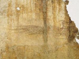 キトラ古墳の極彩色壁画の朱雀