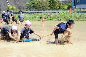 そりに級友を乗せて運ぶ競技で、田を駆ける児童たち=有田町の曲川小の学校田