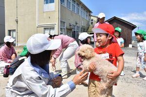 佐賀農業高の生徒のサポートを受けながらトイプードルと触れあう園児=白石町の佐賀農業高