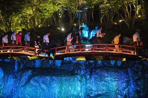 滝や木々をライトアップし幻想的な世界を作り出した慧洲園の日本庭園=武雄市