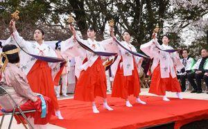 満開の桜の下、巫女舞を披露するキッズミュージカルTOSUのメンバー=鳥栖市の田代公園