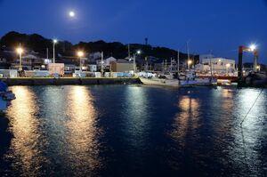 静まり返った港町で海面を鮮やかに彩る街灯の光=唐津市呼子町の呼子港
