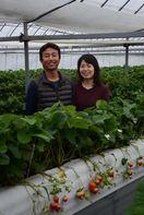 佐賀農業賞(中) 若い経営者の部