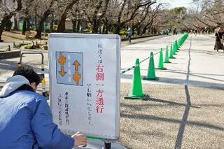 上野公園、密集避け片側通行に