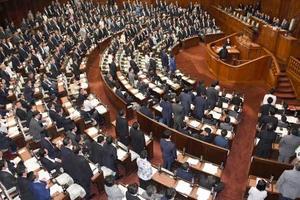 カジノを含む統合型リゾート施設(IR)整備法案を賛成多数で可決した衆院本会議=19日午後