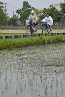 県内やっと梅雨入り 51年以降最も遅く