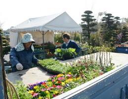 植木や花苗を搬入し、売り場づくりに汗を流す造園業者ら=吉野ケ里歴史公園臨時駐車場