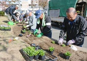 花壇に花を植えていく「ゆめさが大学」の受講生ら=佐賀市の草場公園