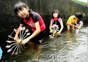 自作した水車の模型を用水路につけて、動く仕組みを学んだ児童=唐津市相知町