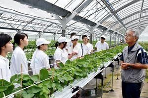 熊本地震で被災した現状や栽培している夏イチゴについて話す縄田さん(右)と生徒=熊本県南阿蘇村立野地区