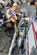 8キロ前後の良型大量 長崎・上五島でヒラマサ釣り