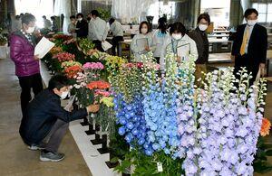 出品された花きを見る審査員=佐賀市鍋島町の佐賀花市場