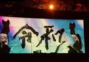 プロジェクションマッピングに合せて「令和」の揮毫を行う山口芳水さん=1日午前0時4分、鹿島市の祐徳稲荷神社