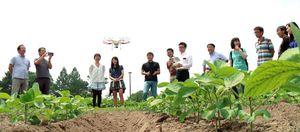 カメラを搭載し、ほ場の上空を飛ぶドローン。画像データを解析し、農作物の生育や害虫の発生箇所などを把握する(オプティム提供)