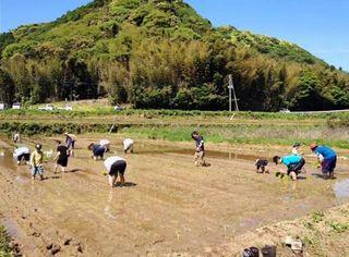 里山で田植え体験 鎮西町打上 5月5日、参加募集