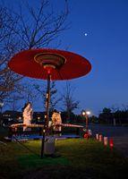 月を鑑賞するお茶会もあり、筝の音色が夜空に響いた=佐賀市東与賀町の干潟よか公園