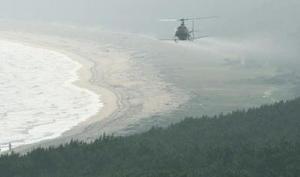 白砂青松をつくり出す「虹の松原」を守るため、薬剤を上空から散布するヘリコプター=唐津ロイヤルホテル屋上から撮影