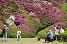 佐賀県内観光地、苦悩のGW 県外のお客さんが支え お迎え…