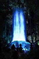 森の中で光の滝が降り注ぐ