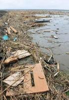 家屋のドアや流木などが大量に流れ着いた鹿島市の新籠海岸=7日午後2時半ごろ