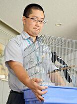 県庁に県鳥(ケンチョウ)カササギ…