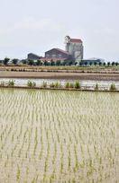 県内農地集積率7割超 「担い手」農家へ委託全国2位