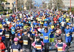 <さが桜マラソン>春駆ける1万人…