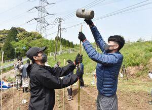 畑に支柱を打ち込むインドネシアの技能実習生=伊万里市黒川町