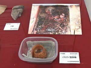 貝製の腕輪。弥生時代に祭事で使われていたとみられる=佐賀市の佐賀大学美術館