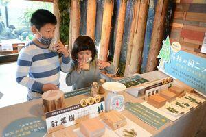 木材のにおいをかぐ子どもたち=佐賀市の未来工房の森