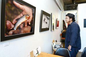 県展を目指す写真家が作品を並べる=佐賀市の「FINDER」