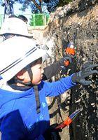 地層を掘り中から出てく遺物から時代を類推する子どもたち=佐賀市川副町・諸富町の三重津海軍所跡