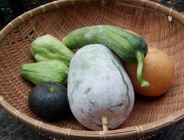 知人からのおすそ分けの野菜と表面が傷ついて出荷できないナシ。エコ料理の食材たちです
