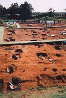 発掘当時の列埋葬