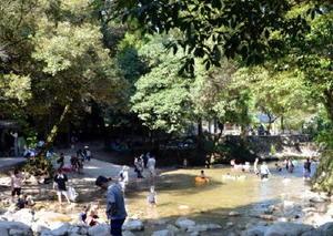 四阿屋神社近くの水遊び場。夏場はたくさんの子どもたちでにぎわう