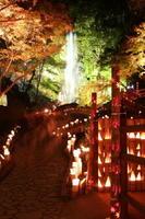 バスツアーでは、竹灯りでライトアップされた清水の滝周辺なども散策する(提供・小城商工会議所)