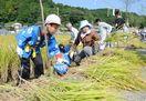 献穀田で抜穂式 被害防ぎ、秋の実り