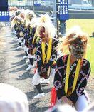 11月の陛下即位祭典、鹿島の母ヶ浦面浮立も出演へ
