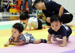 親たちの声援を背に、ハイハイする子どもたち=6月、佐賀市のゆめタウン