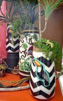 カラーサンドでオニオオハシを表現した作品=佐賀市兵庫北の渡辺花屋