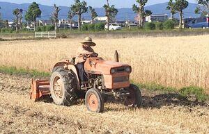 麦の収穫後、麦わらを田んぼにすき込む農家=21日、佐賀市本庄
