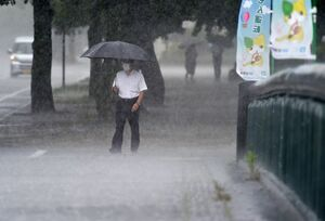 激しく打ち付ける雨粒で白くかすむ歩道=佐賀市の県庁前