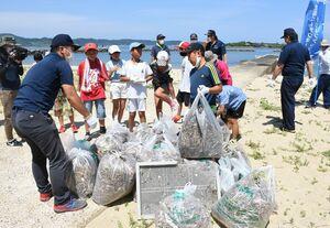 神集島の海岸で湊小の5年生たちが拾い集めたごみ=唐津市神集島の白浜海岸海水浴場