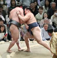 鶴竜(右)が押し出しで荒鷲を下す=エディオンアリーナ大阪