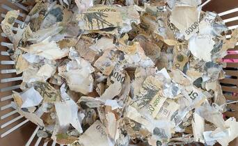 コロナ「消毒」で紙幣損傷、韓国